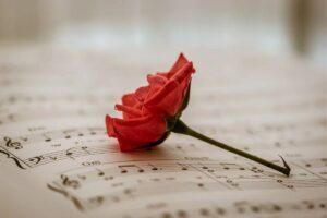 楽譜とバラの画像